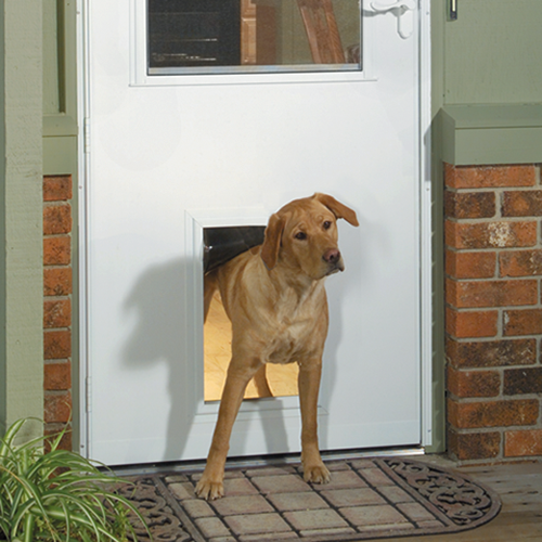 storm doors with dog door
