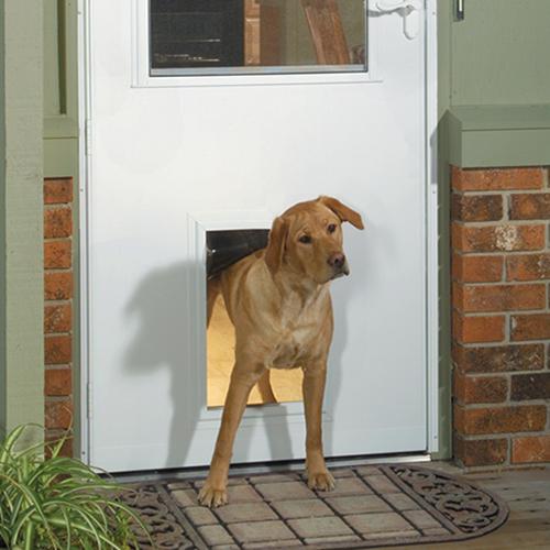 storm doors with dog door