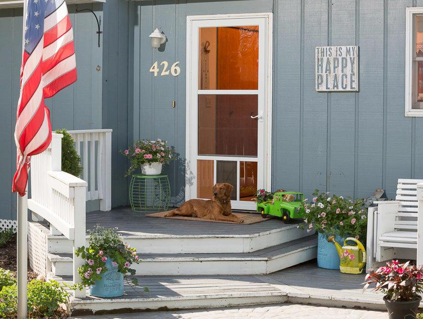 Merveilleux Full View Storm Door With Dog Door