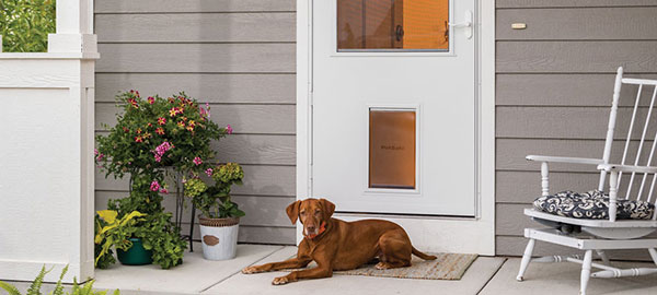 The New Storm Door Is A Pet Door Too